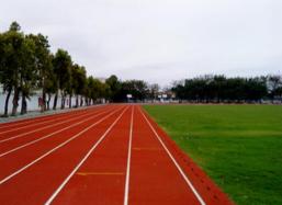 单招院校-运动场