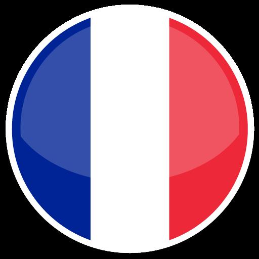 法国VAT申报