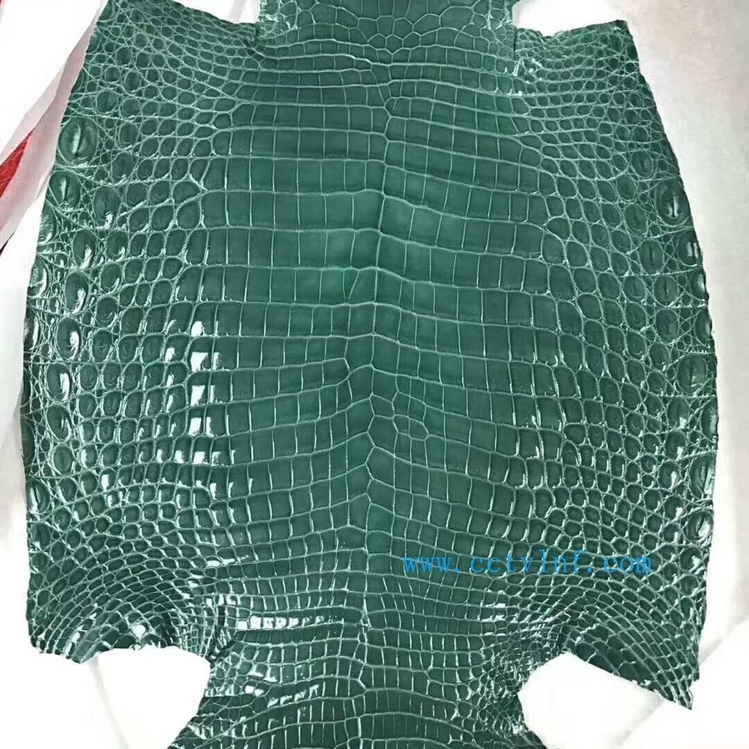美洲鳄鱼皮高光