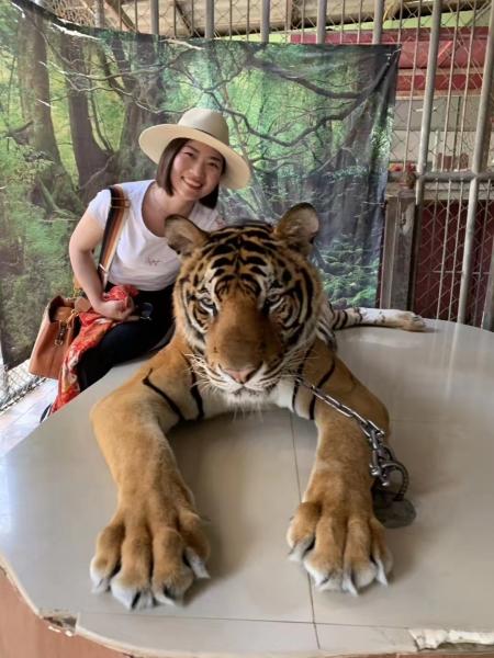 2018年泰国之Ψ 旅