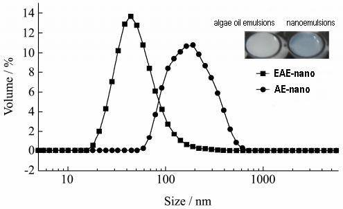 nanoparticles distribution and  their appearances of EAE-nano and AE-nano.jpg