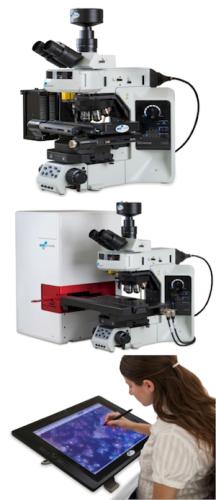 BioView扫描系统.png