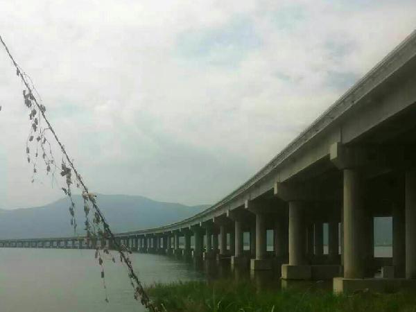 灌浆料_罗源湾大桥