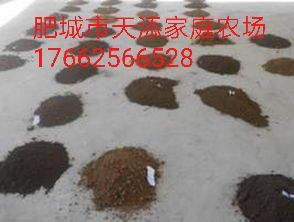 免费测量土壤