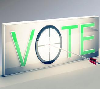 vote投票