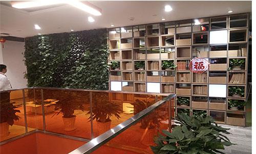 三亚免税店植物墙,三亚海棠湾植物墙,