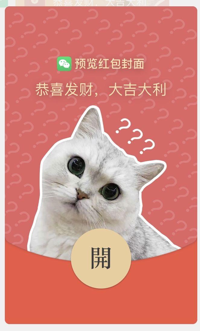 粉色猫咪.jpg